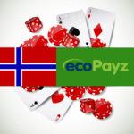 ecoPayz Норвегия